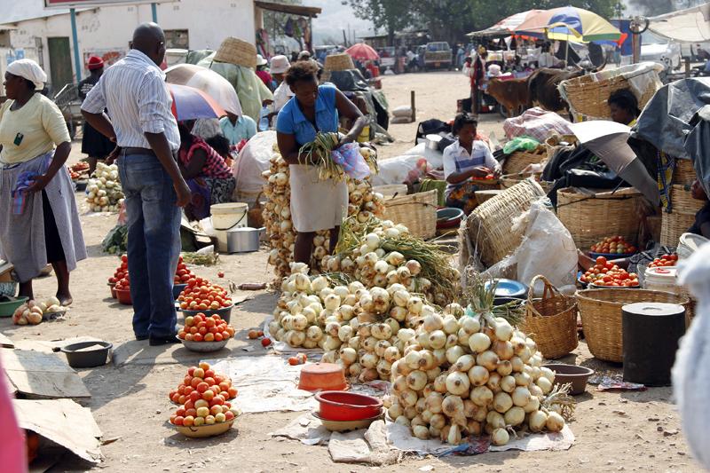Zim's economic revival possible