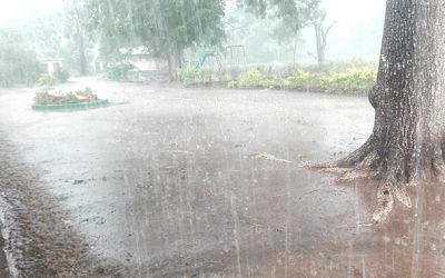 Farmers advised to wait for November rains